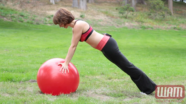 Stability Ball Push Up 2