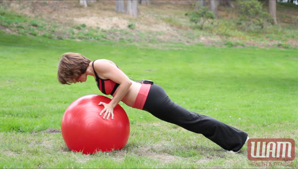 Stability Ball Push Up 3